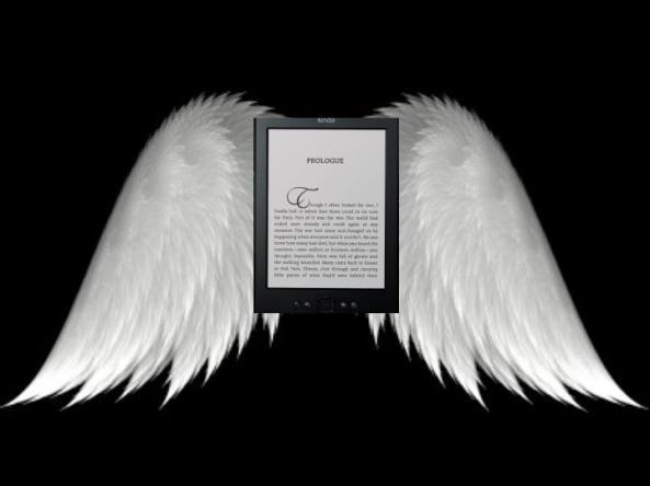 Winged Kindle