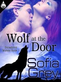 wolfatthedoor - final cover