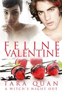 Cover_FelineValentine_TaraQuan