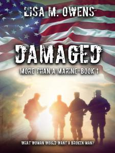 Damaged Ebook Cover