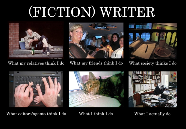 fiction-writer-meme