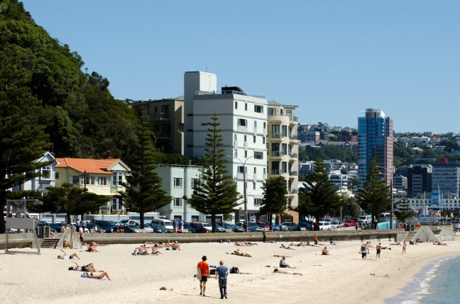 Wellington Cityscape - Oriental Bay